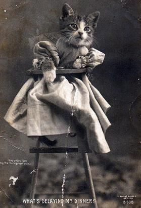 Silly cat pictures aren't new.  Whoever did this is a true hipster!