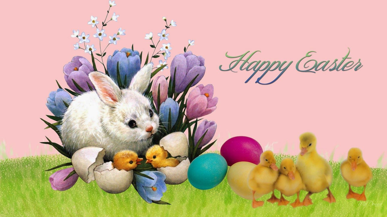 Great Collection Of Easter Hd Wallpapers Easter Quotes Easter