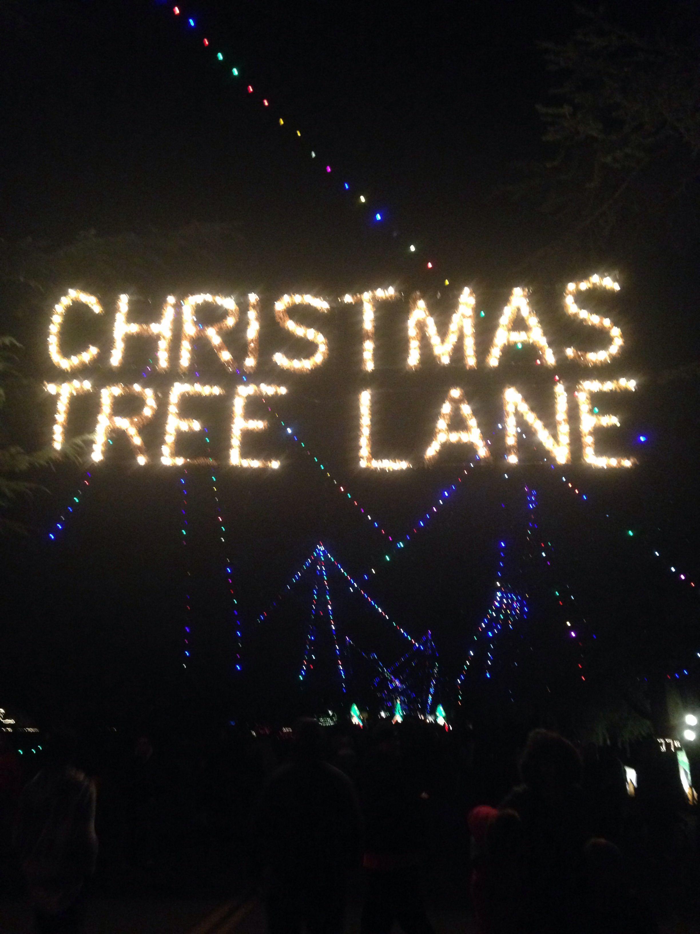 Christmas Tree Lane, Fresno, Ca My pics in 2019