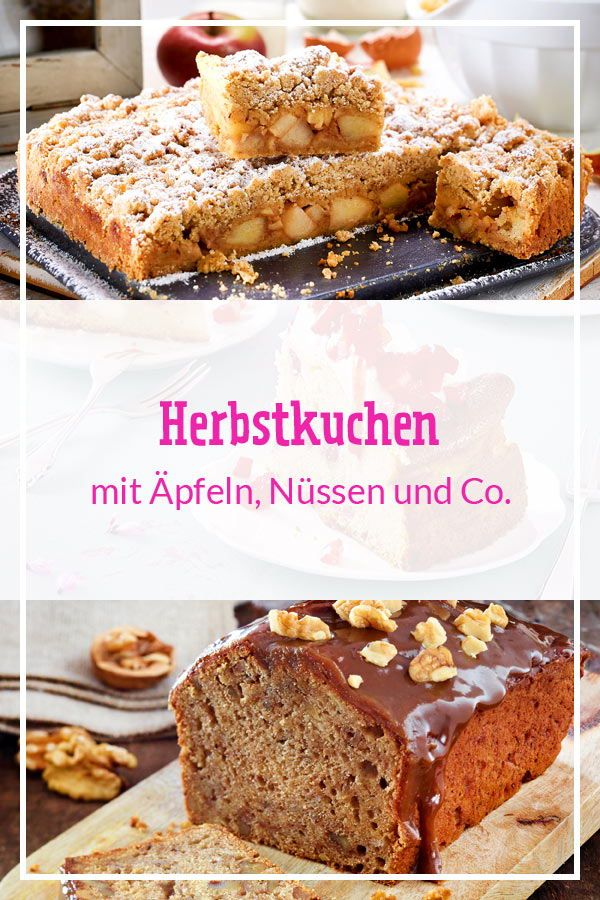 Photo of Autumn cakes – the best recipes of the season DELICIOUS