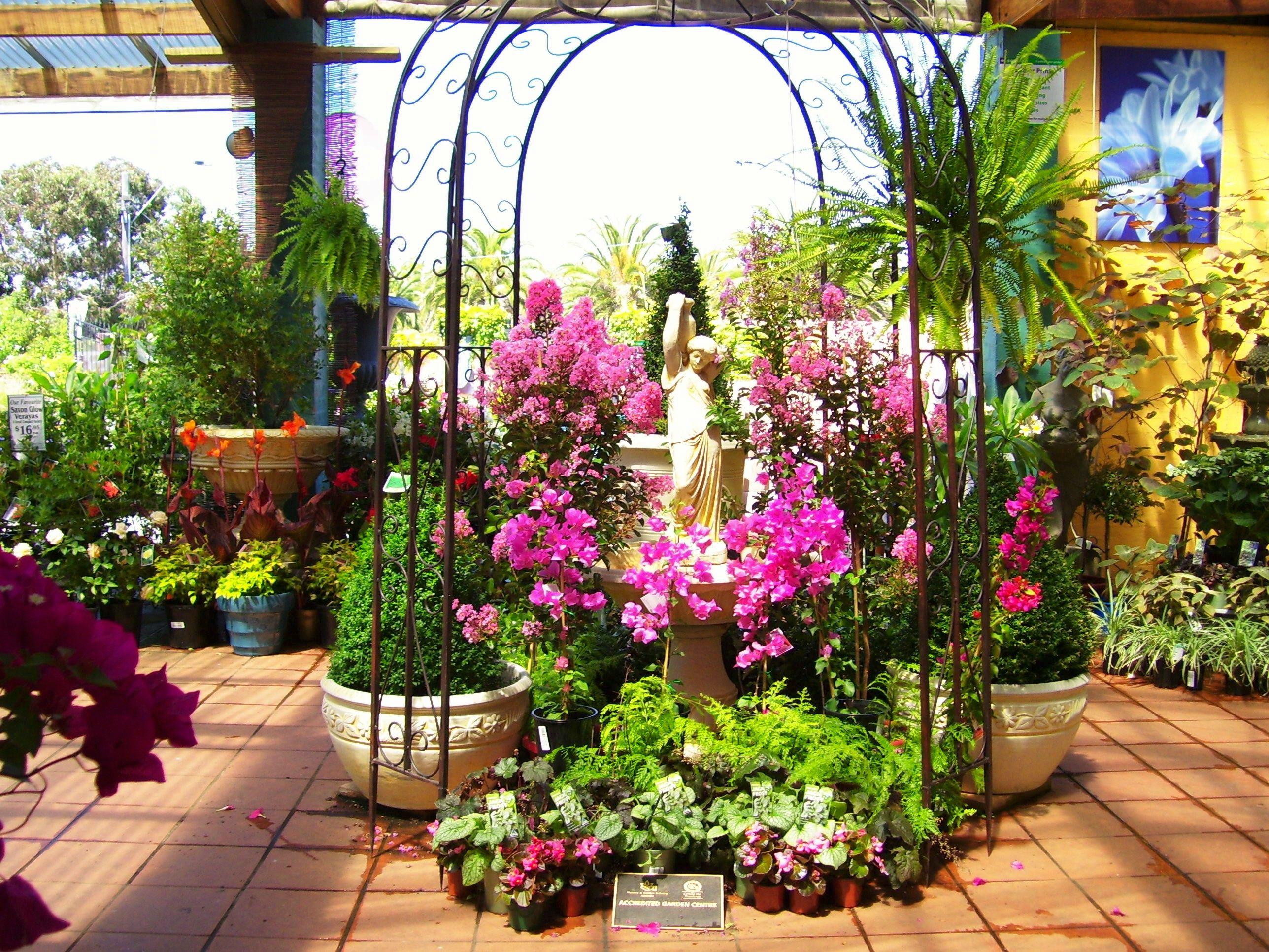 Beautiful Display To A Garden Nursery Essendon Photo By Dana Bonn Australia Garden Center Displays Plants Plant Nursery