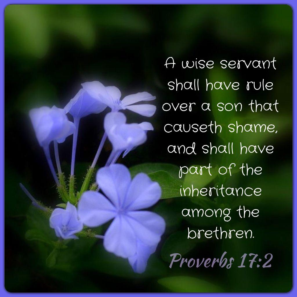 Proverbs 17:2 KJV | Proverbs KJV | Pinterest