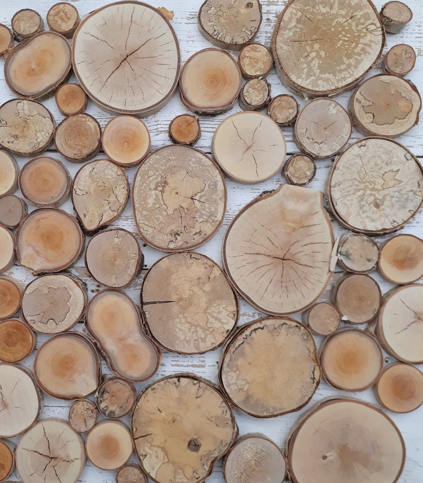 1 60pcs 2 10cm 0 8 4 Natural Birch Wood Tree Slices Rustic Wedding Table Decor Log Coasters Wooden Name Cards Pyrography Crafts And Art