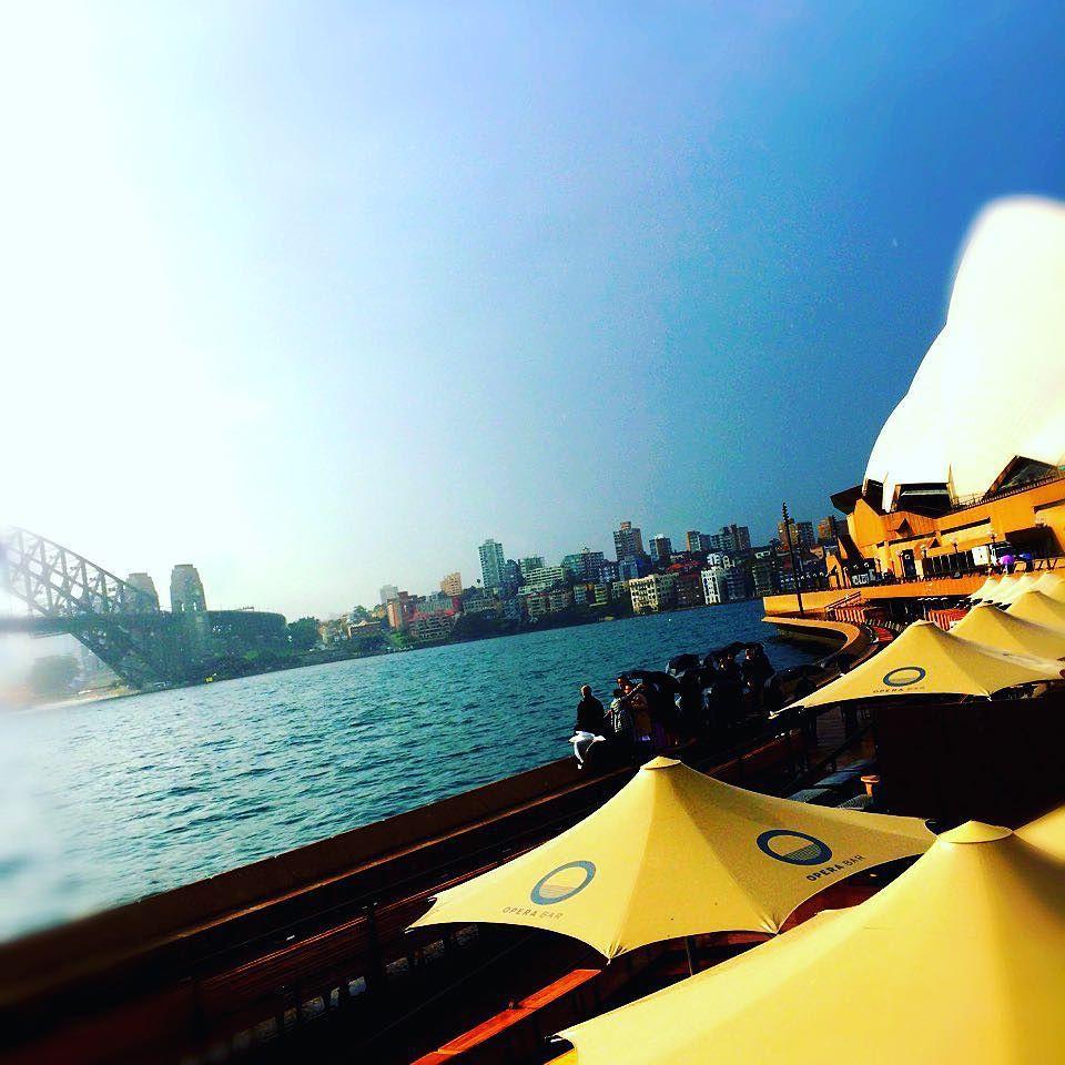前にオーストラリアに行った時の写真 #australia #sydney #sydneyharbourbridge #operahouse #august #summer #2015 by rei_good_imhappy http://ift.tt/1NRMbNv