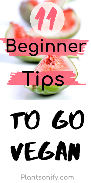 Photo of Einfache Tipps für Anfänger, um vegan zu werden