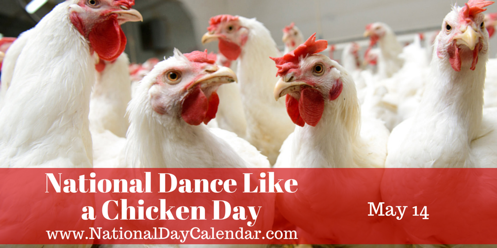 "Did you know it's National ""Dance Like a Chicken Day"