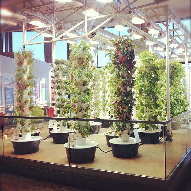 Vertical Garden Chicago: Chicago O'Hare Terminal Vertical Gardens ...