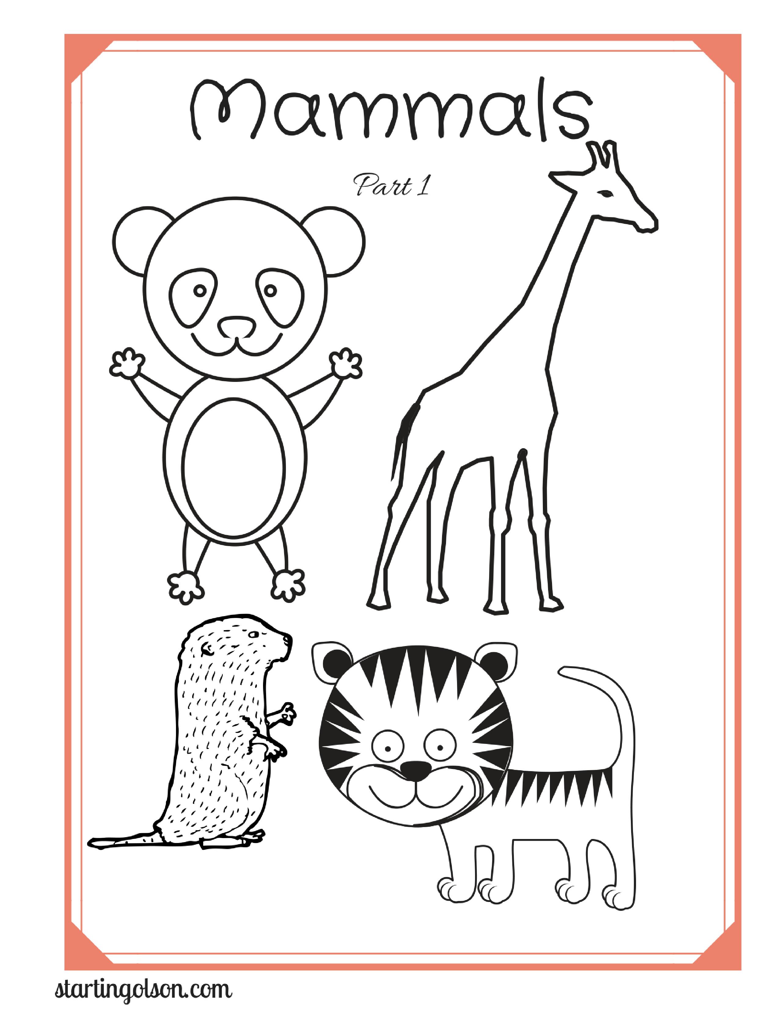Mammals Trivia Part 1