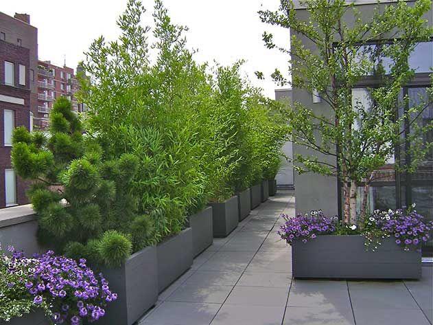 Brooklyn NYC Terrace Roof Garden Deck Patio Planter Boxes Splendid .