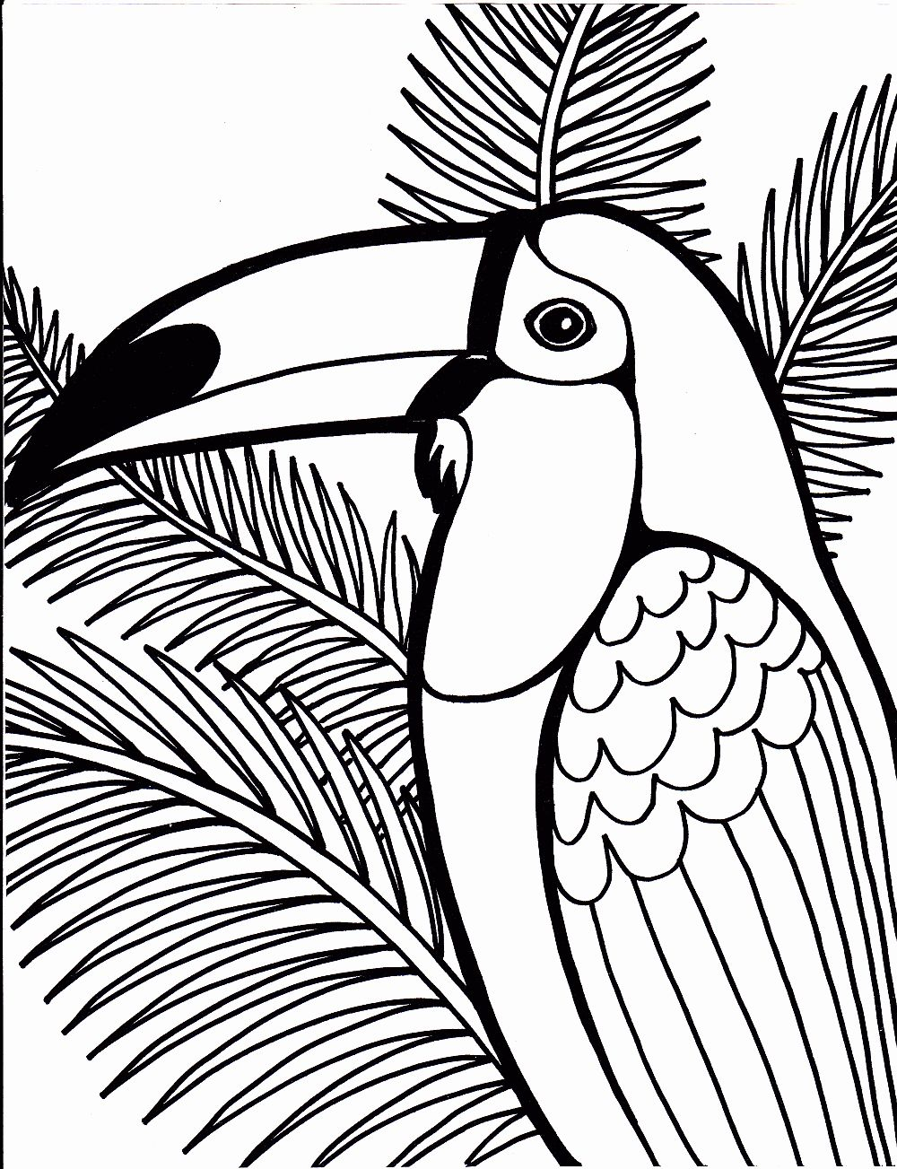 - Rainforest Coloring Pages Printable In 2020 Bird Coloring Pages