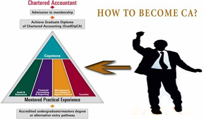 How To Become A Chartered Accountant Ca Ca Course Chartered Accountant Accounting How To Become