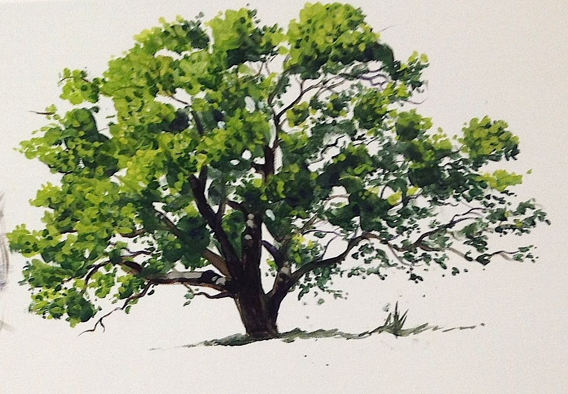 Learn how to paint an oak tree in summer in #acrylics with Jon Cox ...