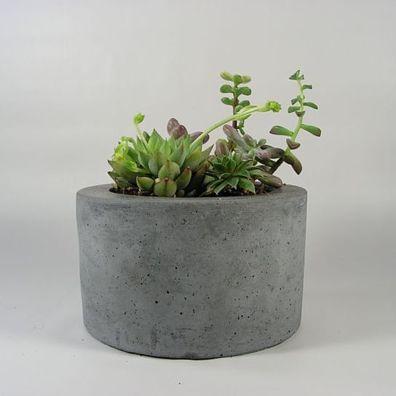 Round Concrete Planter Colocadores De Concreto Plantas Em