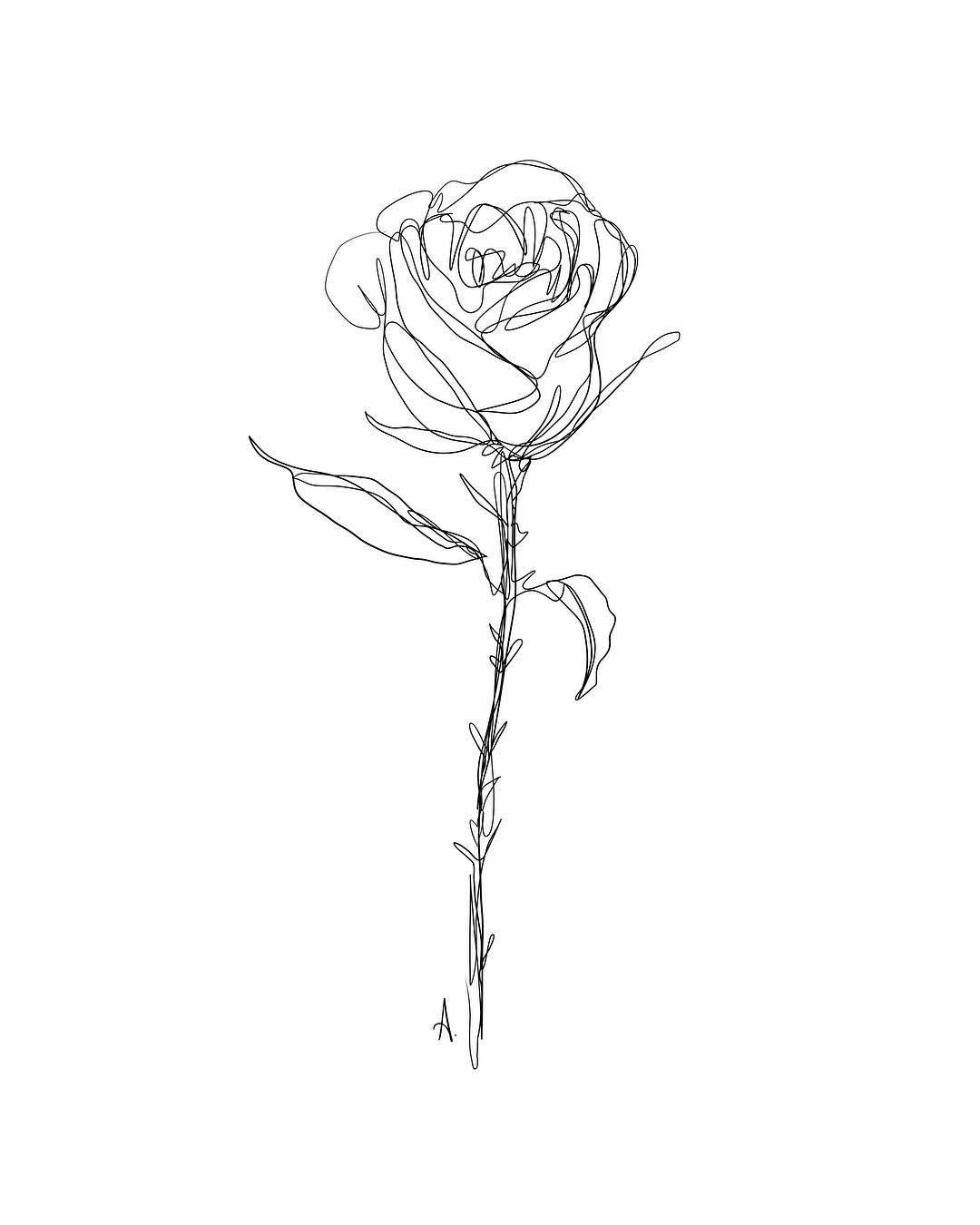 Pin By Lisette On Art Rose Line Art Line Art Drawings Line Art Tattoos