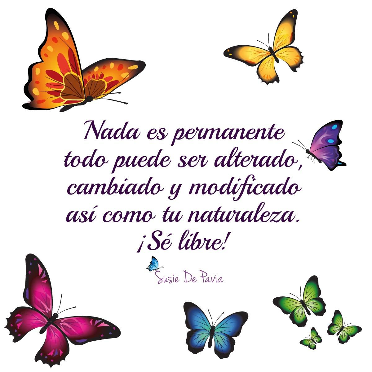 Quotes Frases Love Fun Amor Frase Quote Frases