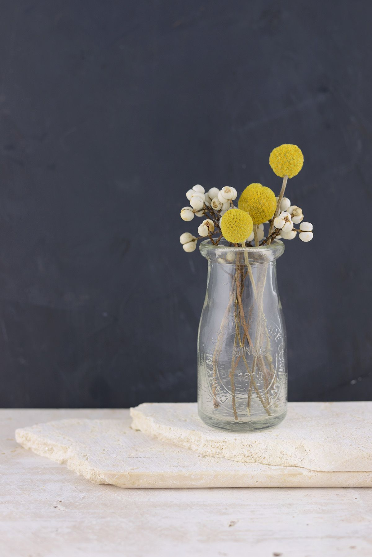 Billy Ball Craspedia Pack Of 10 Billy Buttons Dried Flowers Flower Painting