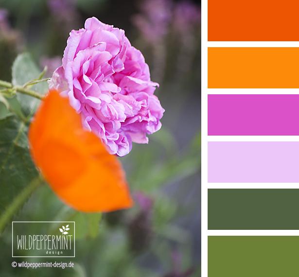 Farbpalette Sommerblumen, Farbinspiration #rosa #orange