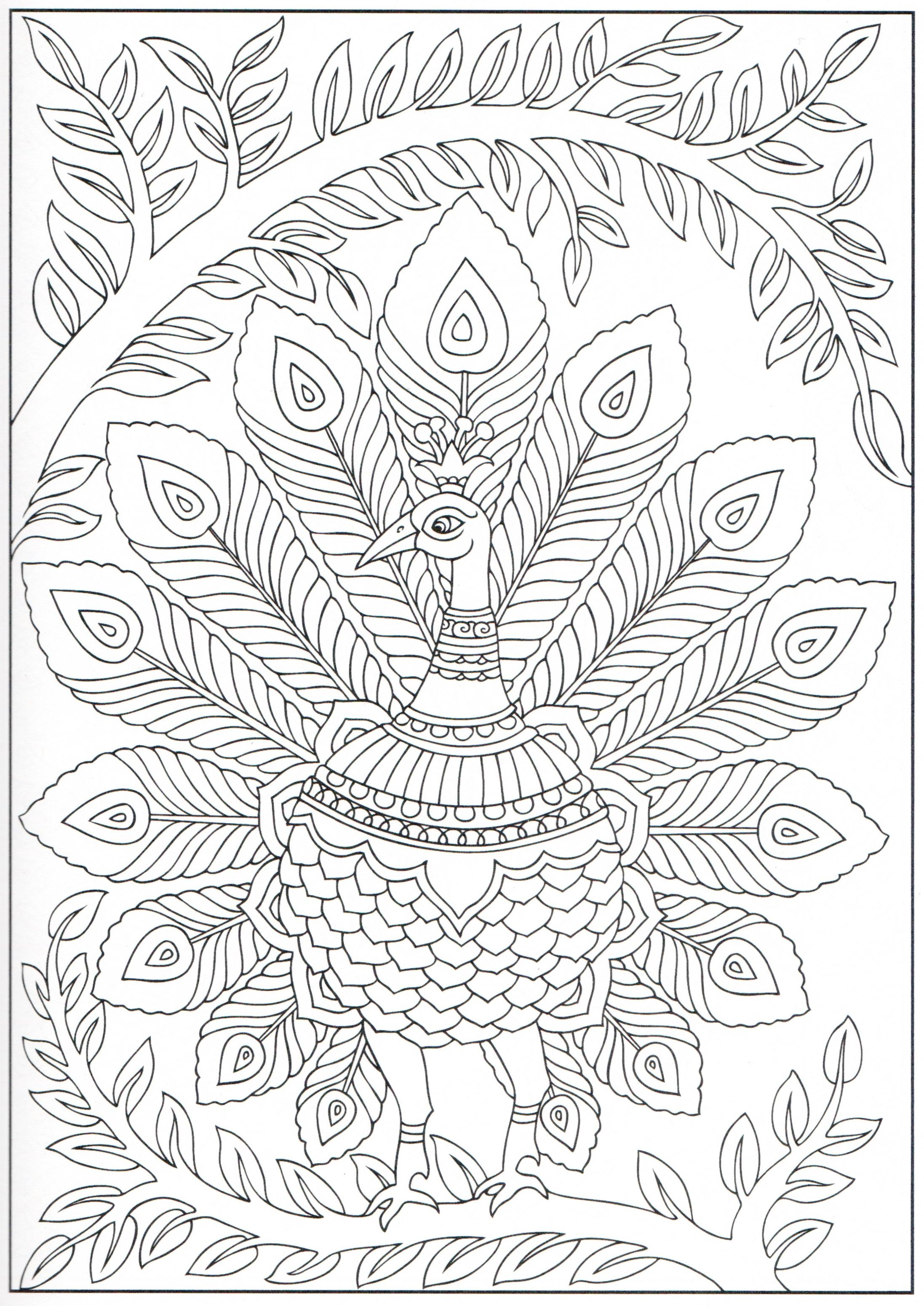 Peacock coloring page 12/31 | Adult Colouring Products | Pinterest ...