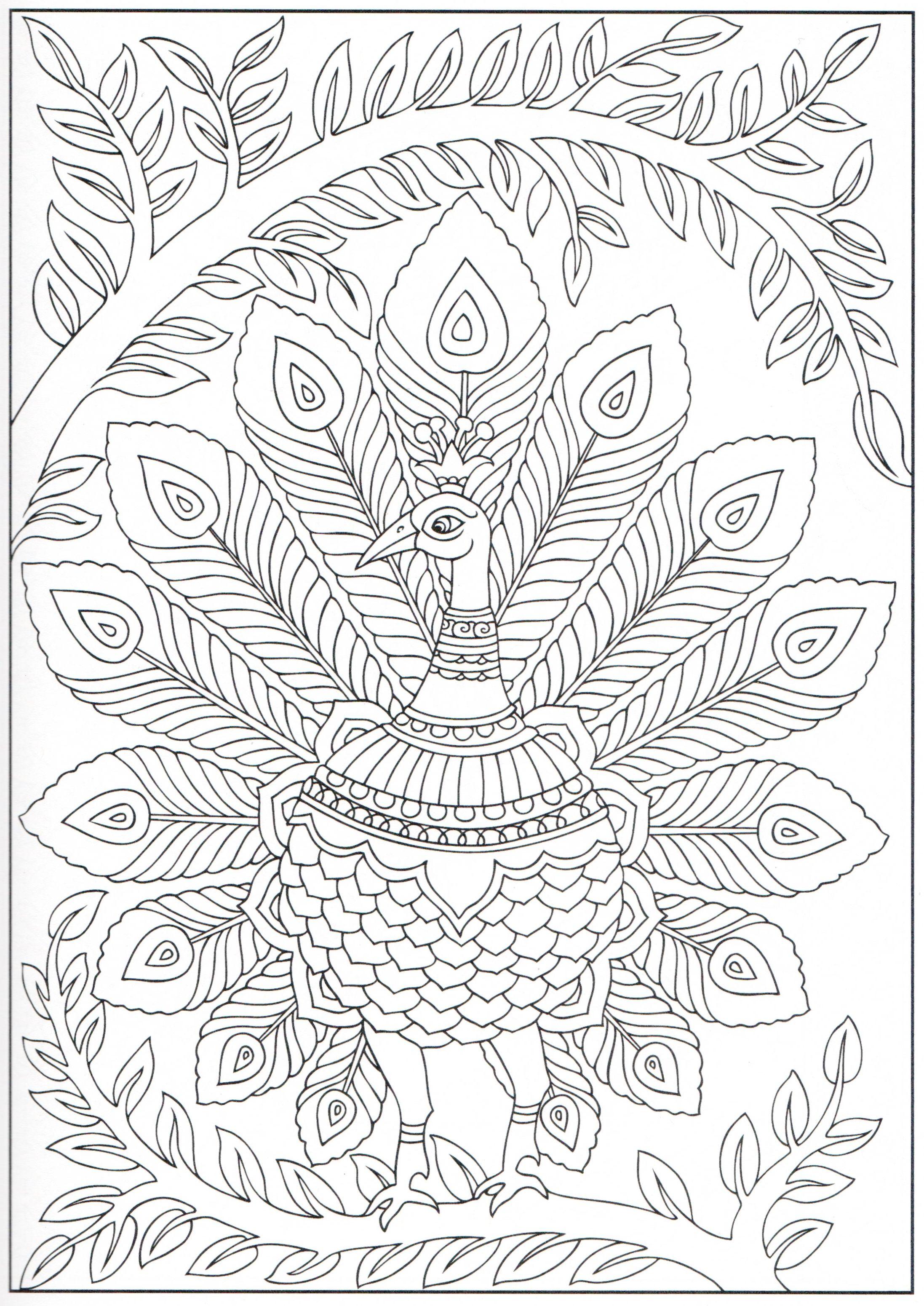 Peacock coloring page 12/31 | Colouring | Pinterest | Mandalas ...