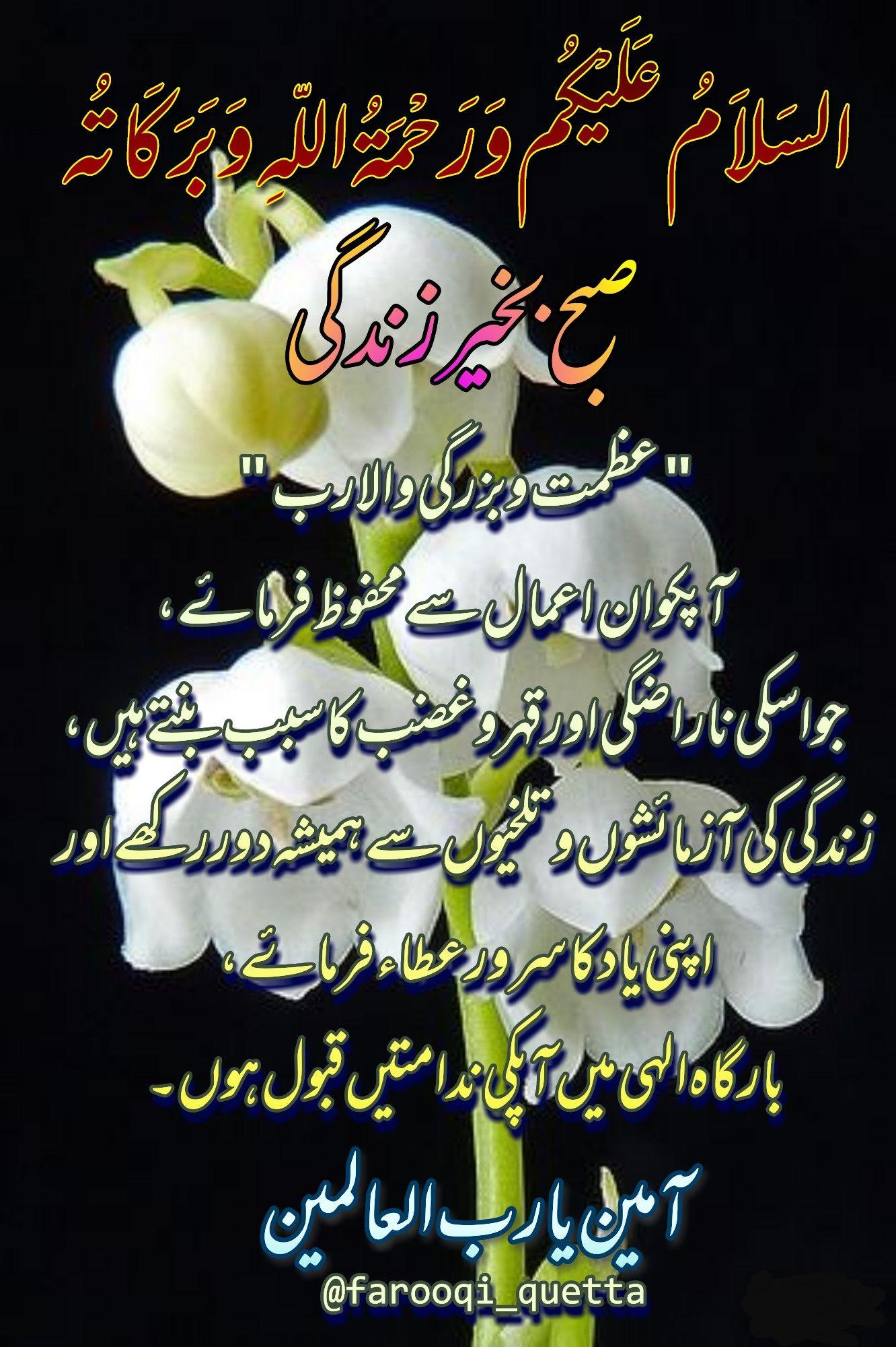 Pin on Urdu Morning