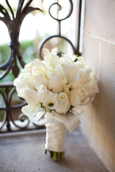 valkoisia tulppaaneja