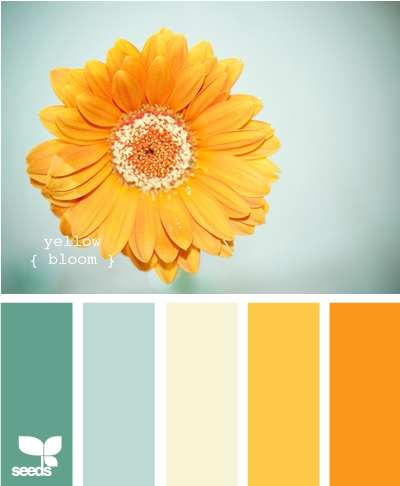 De Colores Color Palette Yellow Color Schemes Color Palette