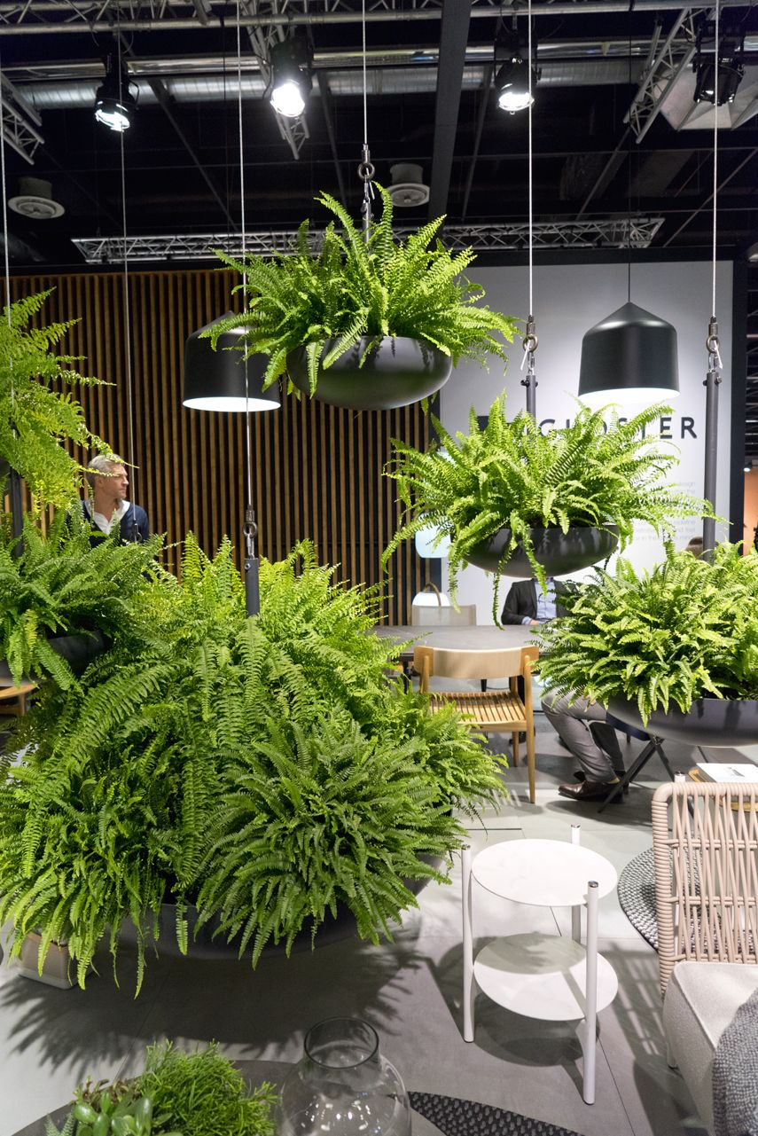 plant trends from imm 2017 in cologne peintures murales pinterest jardins boiseries et. Black Bedroom Furniture Sets. Home Design Ideas