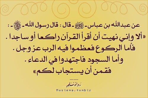 النهي عن قراءت القرآن في الركوع والسجود Arabic Calligraphy Calligraphy