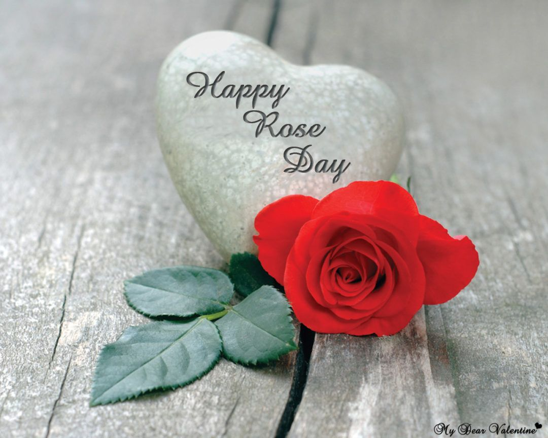 50 Happy Rose Day Pictures Wallpapers For Lover Special Cute Couple Rose Day Wallpaper Roses Are Red Poems Happy Valentines Day Sms Cute rose day couple hd wallpaper