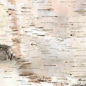 Small White Birch 2 by stoneamazon