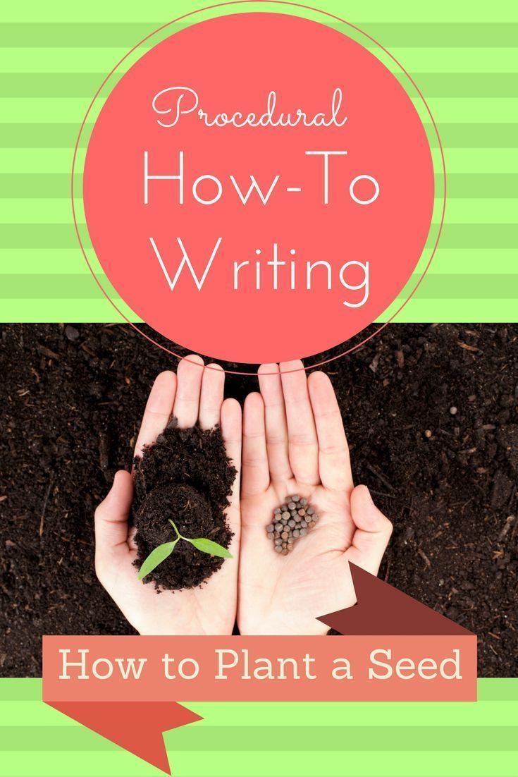 This how-to booklet could be used to introduce procedural writing to young writers or to add science writing to your plant studies.