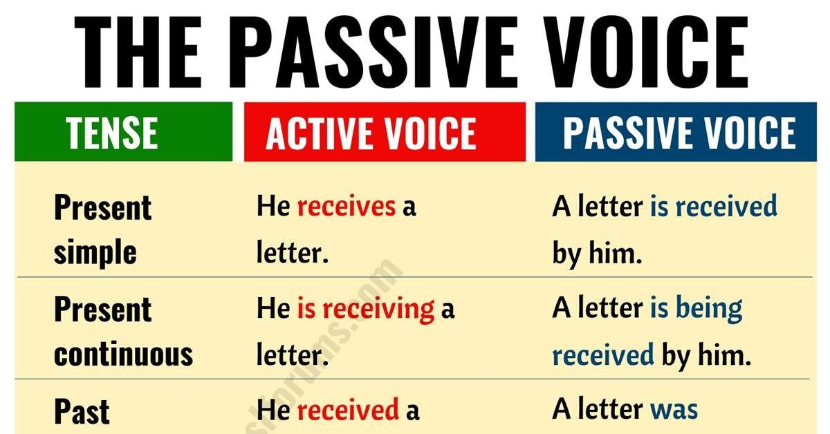 Persuasive essay format 5th grade