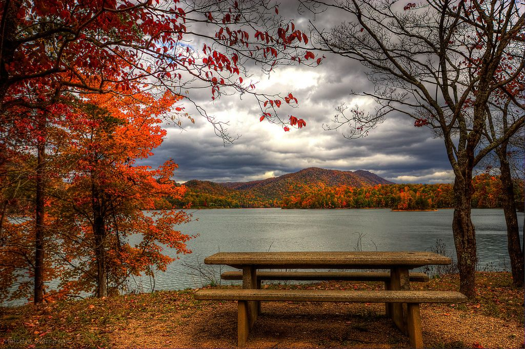 Beautiful Fall Pictures Nature Hot S Wallpaper