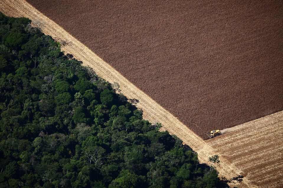 Paradise Lost Aerial Images Of Deforestation In The Amazon