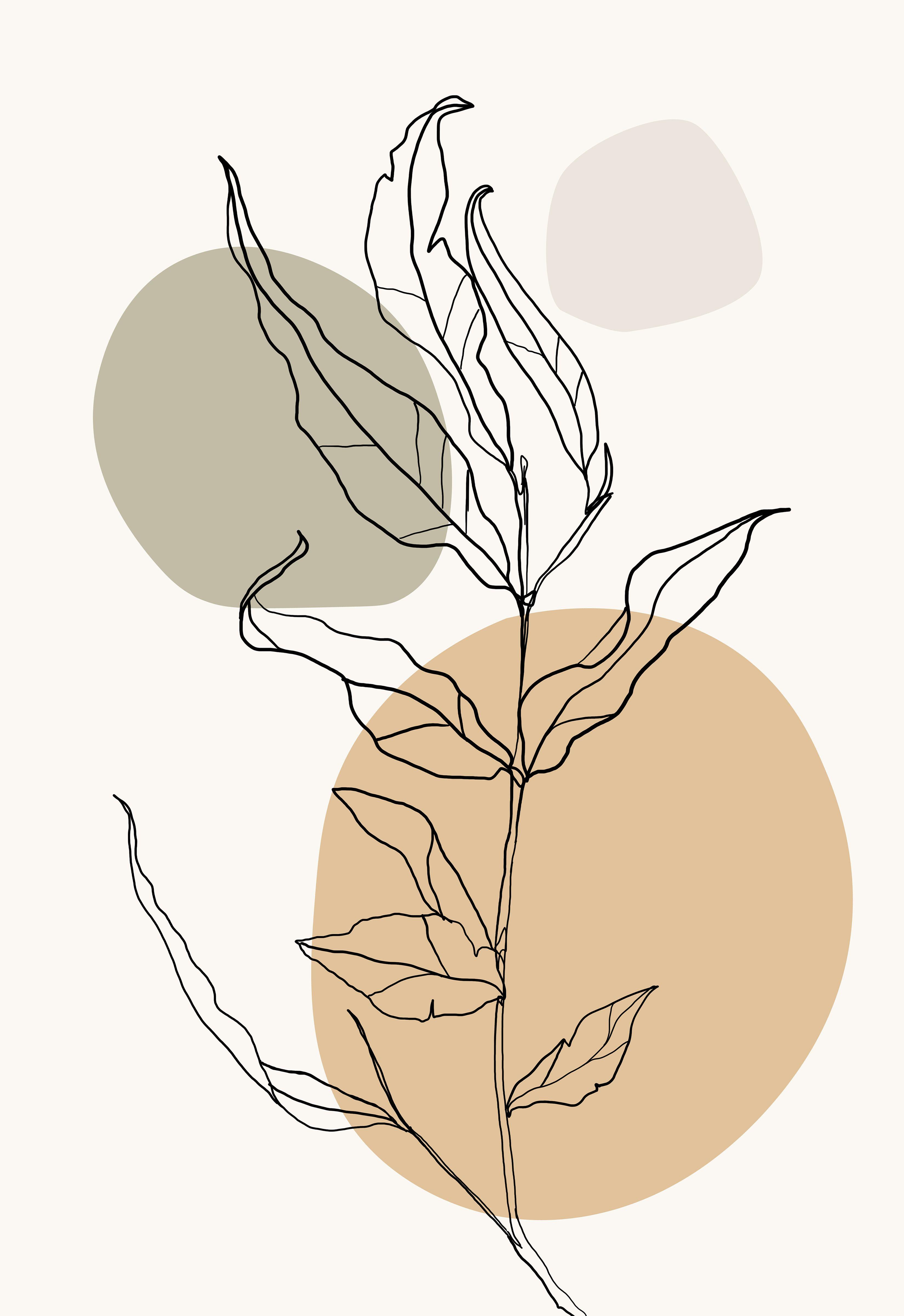One line drawing botanical print, house plant print