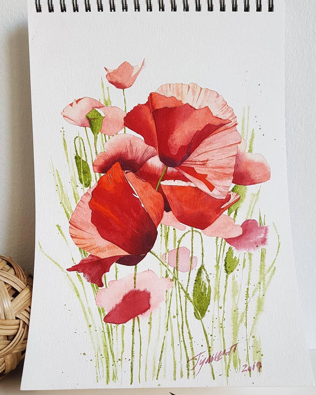 Dry Brush Watercolor Technique Mohnblume Blumen