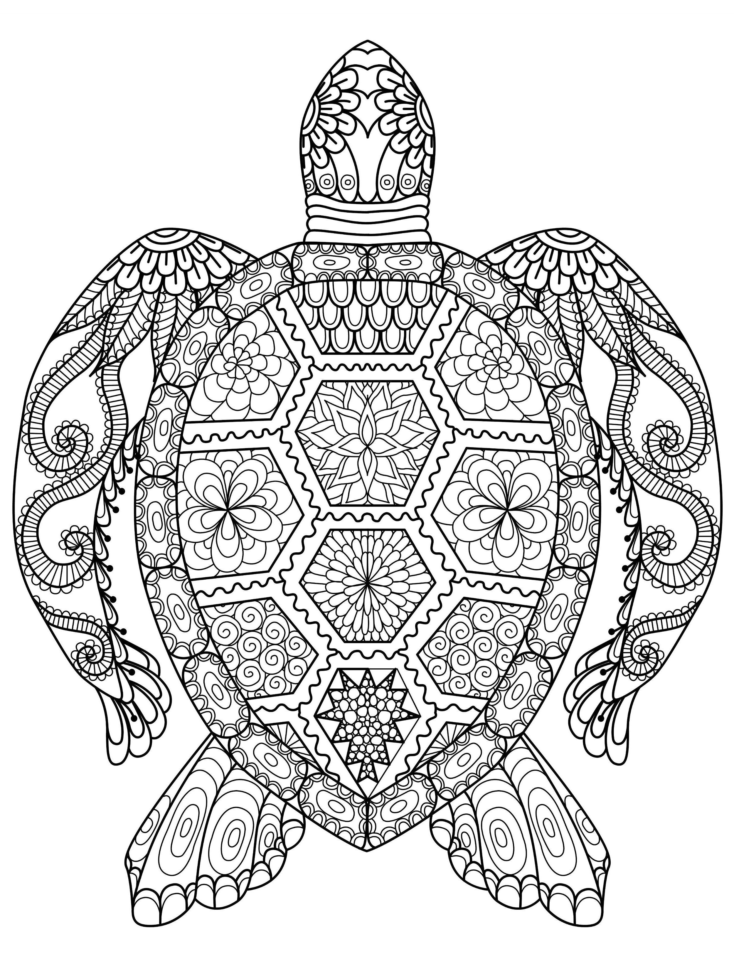 Cute Sea Turtle Mother And Baby Sea Turtles Swimming Together Underwater Coloring Page Turtle Coloring Pages Animal Coloring Pages Baby Coloring Pages