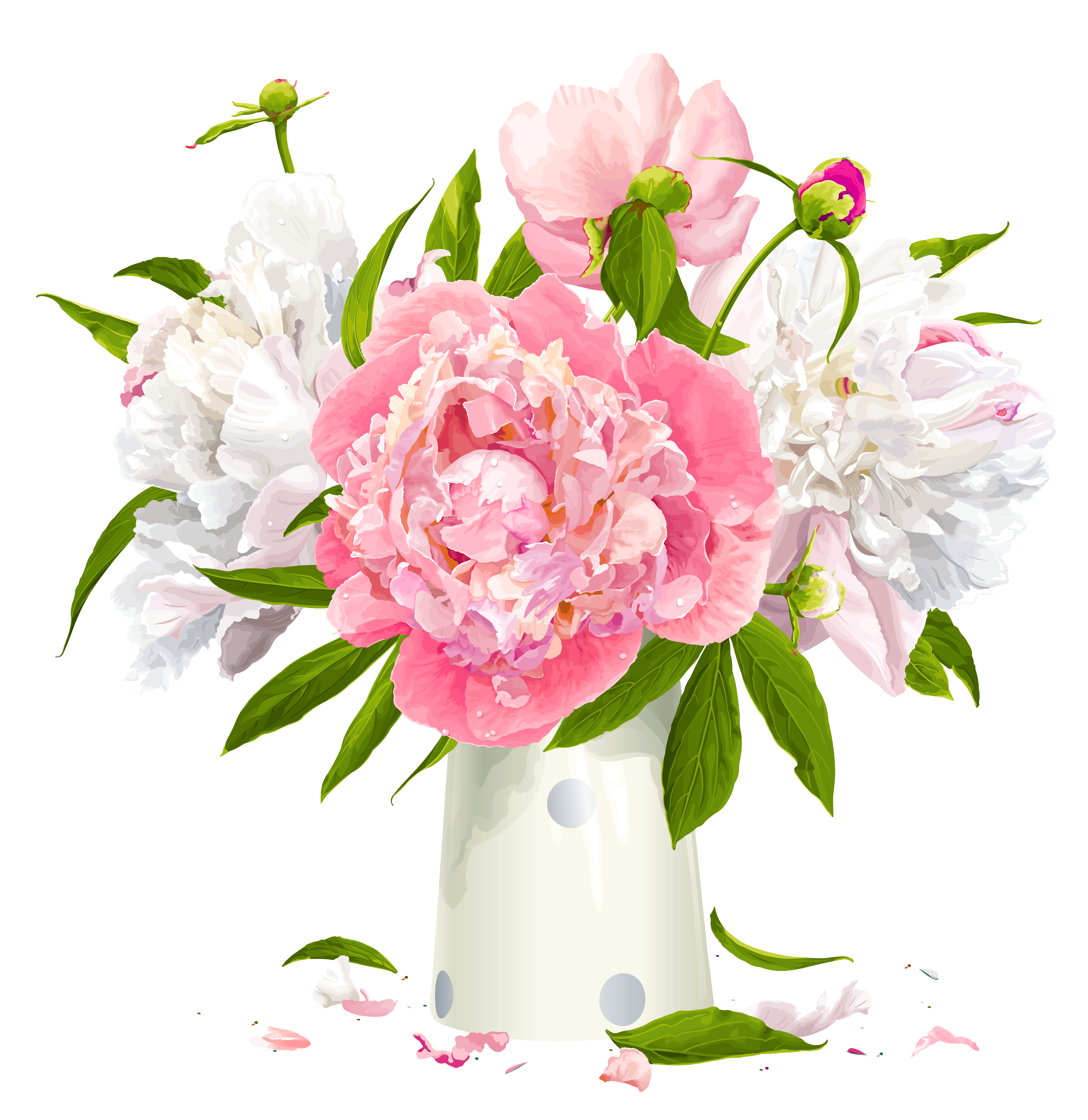 Peony cliparts Flower clipart, Flowers, Peonies