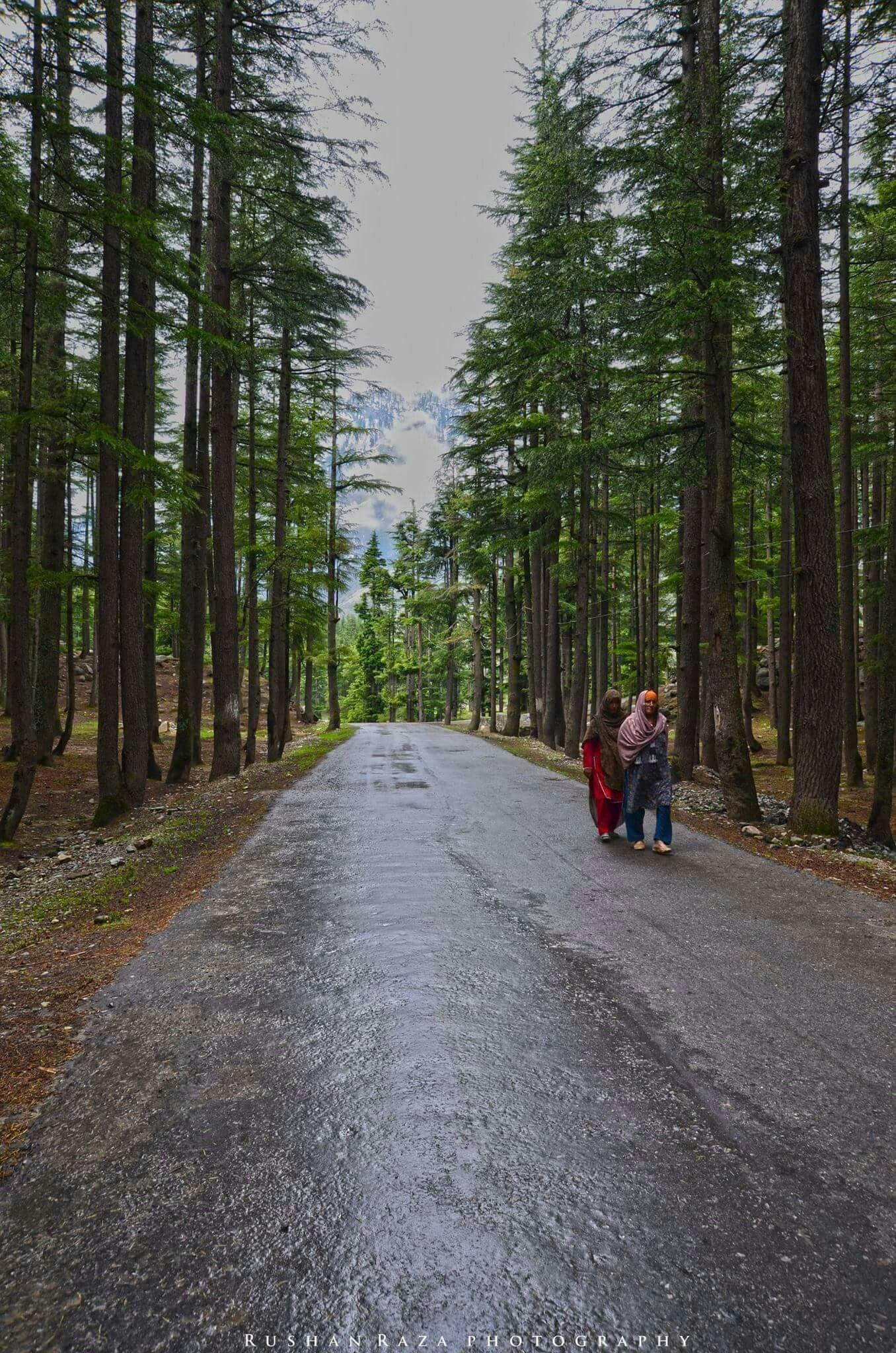 way to kalam swat valley pakistan pakistan pinterest