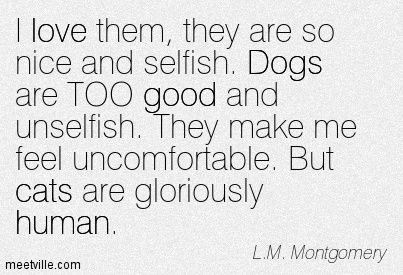 I love them, they are so nice and selfish. Dogs are TOO good and unselfish. They make me feel uncomfortable. But cats are gloriously human. L.M. Montgomery