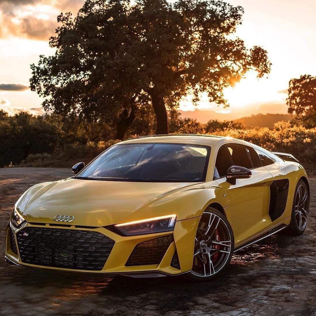 Audi R8 Best Luxury Cars Audi R8 White Luxury Car Brands