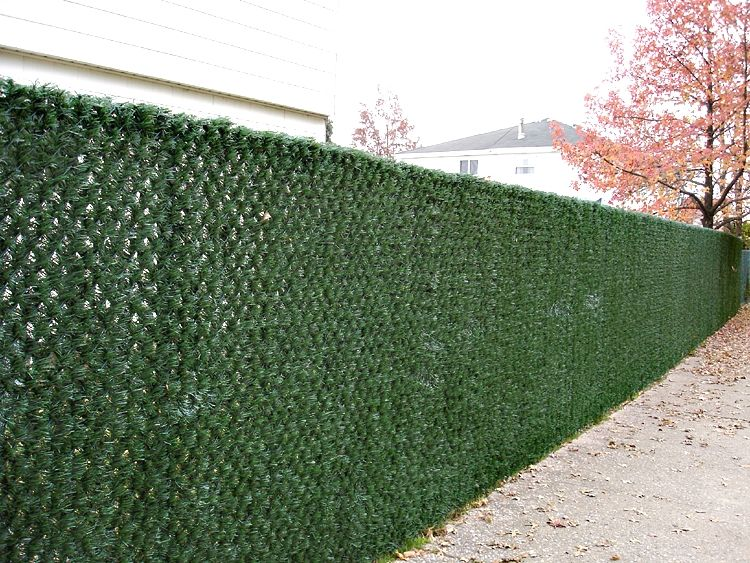 Chain Link Fence Privacy Ideas chain link fence with grass - google search | fence art ideas