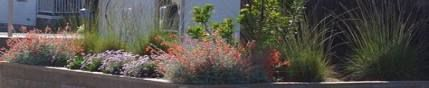 Photo of garden path #garden #garden Fashionable ideas of the flowers garden path grass 66 #flowers …