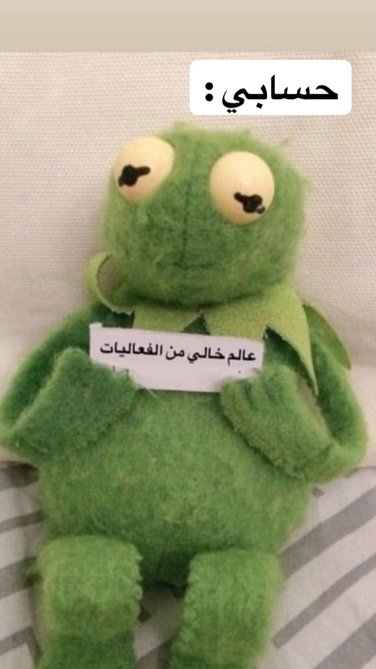 Pin By Edo On فعاليات ميمز Funny Qoutes Dinosaur Arabic Memes