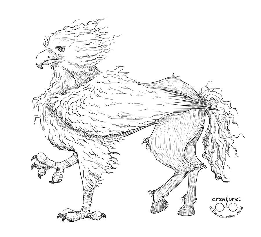 buckbeak coloring pages - photo#21