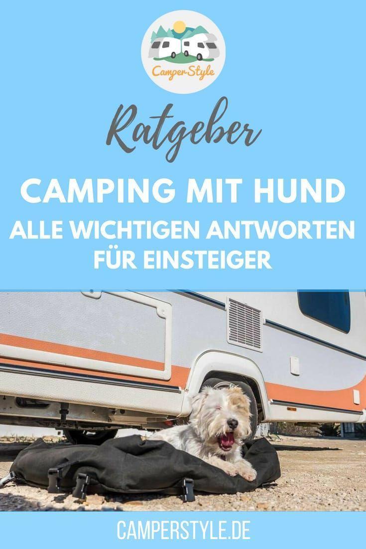 Dein Erster Campingurlaub Mit Hund Das Solltest Du Wissen Camperstyle Campingplatz Mit Hund Wohnmobil Mit Hund Hunde