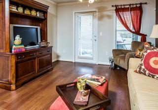 Living Room Avana At Carolina Point Greenville Sc Apartment Communities Apartments For Rent Pet Friendly Apartments