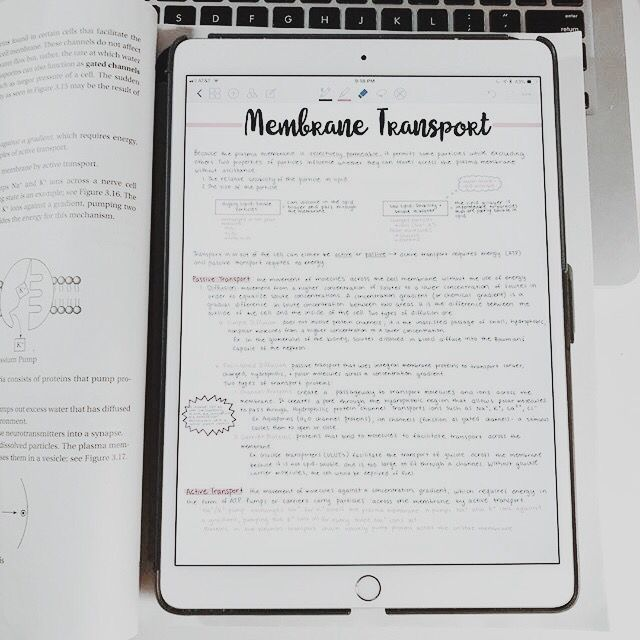 Minimal Digital Study Notes
