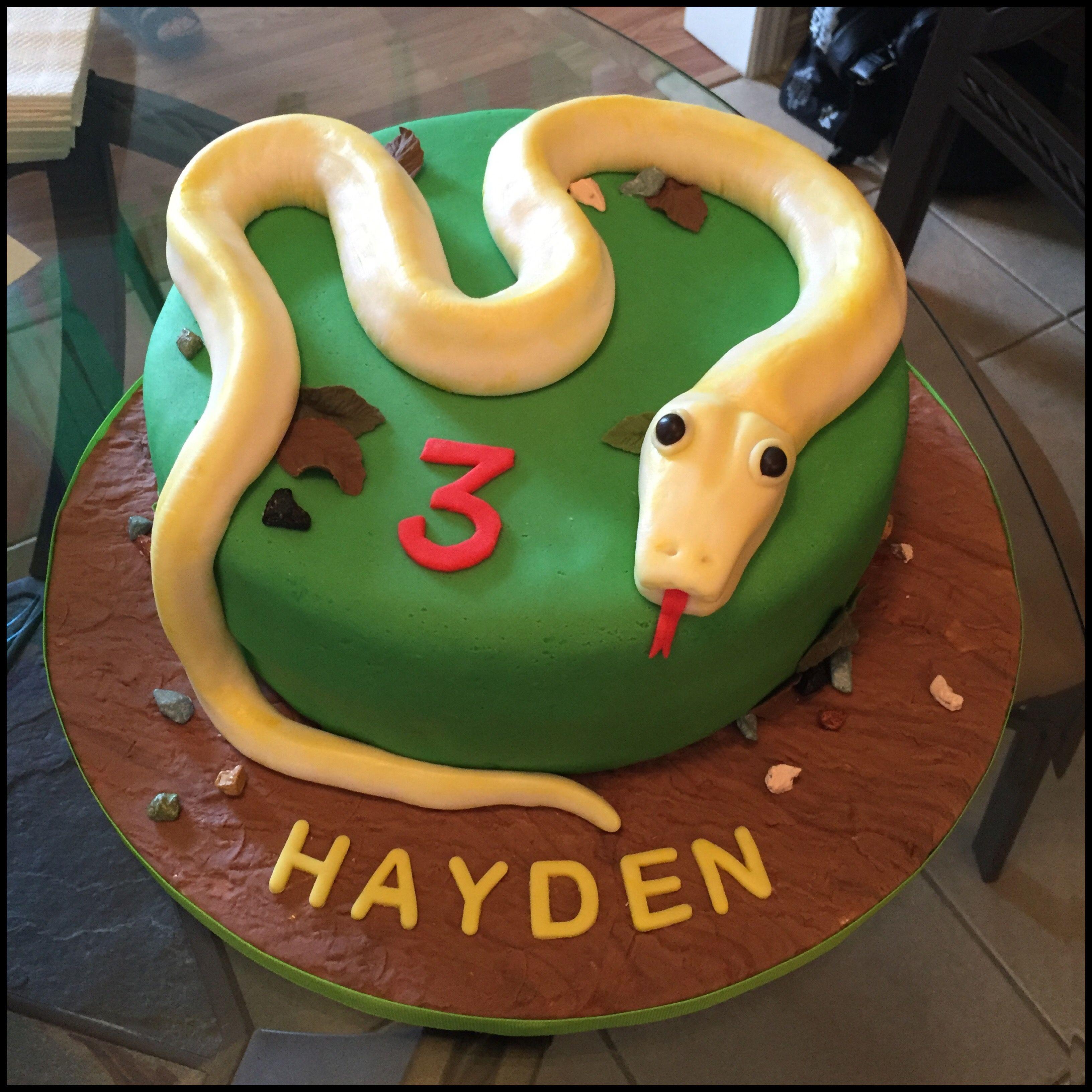 Awe Inspiring Snake Fondant Cake Snake Cakes Snake Birthday Bug Birthday Cakes Funny Birthday Cards Online Overcheapnameinfo