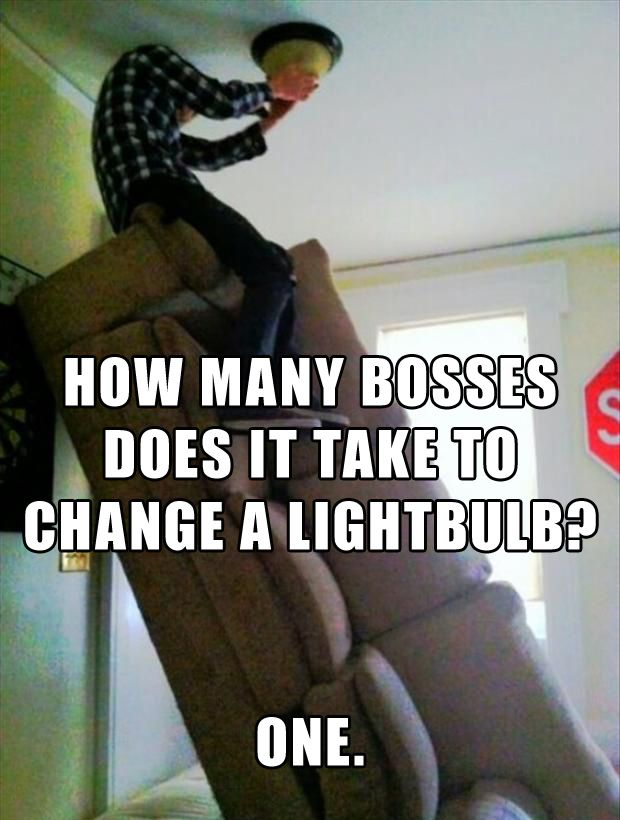 Change A Lightbulb Like A Boss Hah Boss Humor Funny Images Funny Images Gallery